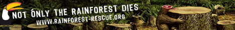 Banner: Not Only The Rainforest Dies