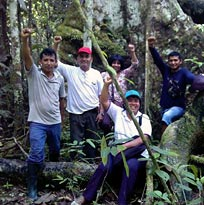 Peruvian environmentalists are fighting for their rainforest trees