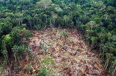 Deforestation in Brazilian Amazon