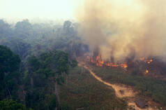 Fire in Amazonia