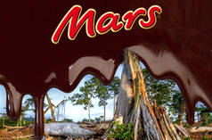 Photomontage: rainforest clearing and Mars logo