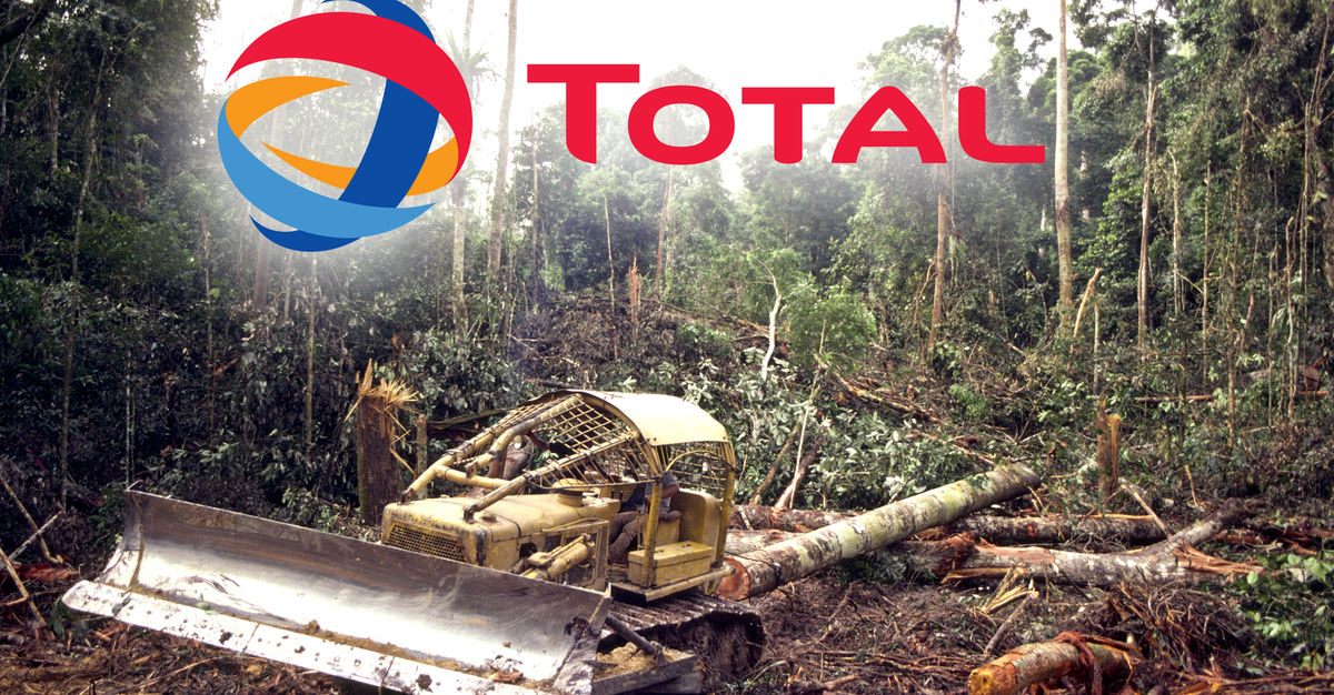 trashing rainforest for biofuel  a total disaster