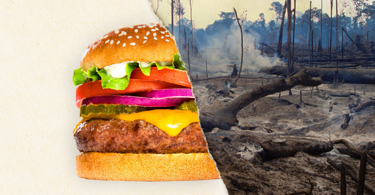 burger king supply chain