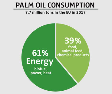 Palm oil consumption by EU