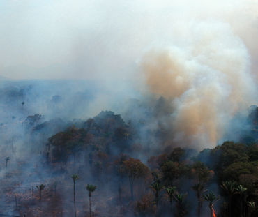 Aerial view of burning rainforest