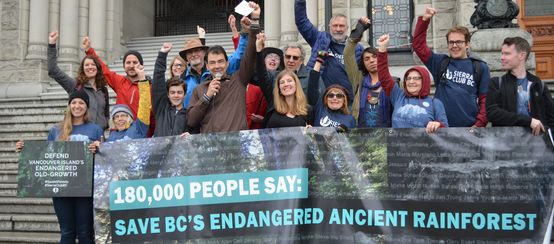 Activists hand over 180,000 signatures protesting logging on Vancouver Island