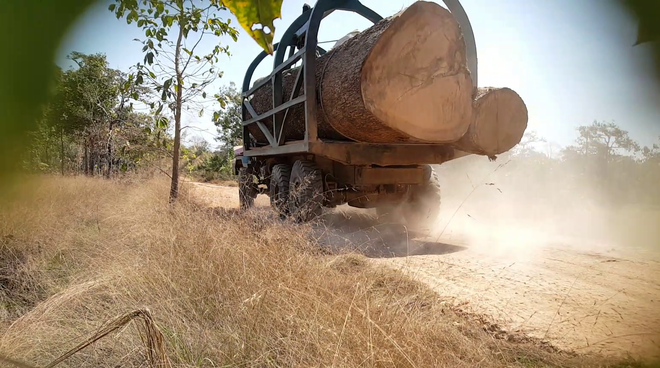 Timber truck in Cambodia