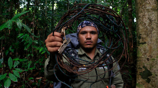 Ranger with a snare he removed in Leuser National Park