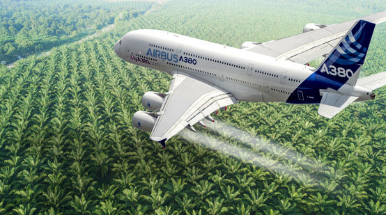 Montage: Airbus A380 over an oil palm plantation