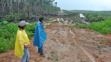 Two Peruvian smallholders in a clearing that will be planted with oil palms