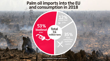 Palm oil imports into the EU and consumption in 2018