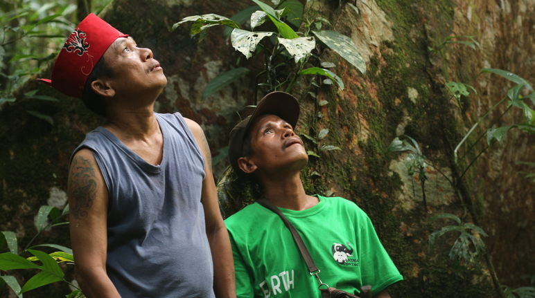 Indigenous Dayak Tomun in Kinipan forest