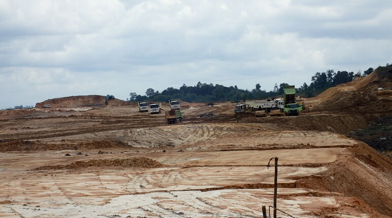 First Resources destroys proboscis forest near Balikpapan