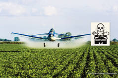 Crop duster aircraft spraying chemicals on a soy field