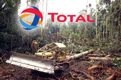 Rainforest clearing, Total logo