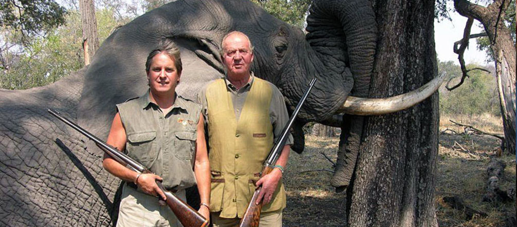 Spain's head of state Juan Carlos in front of his prey, a shot elephant