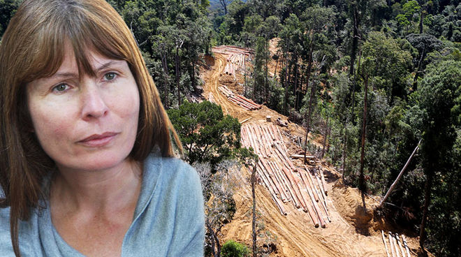 Photo montage of Sarawak Report's Clare Rewcastle Brown and a forest being cleared