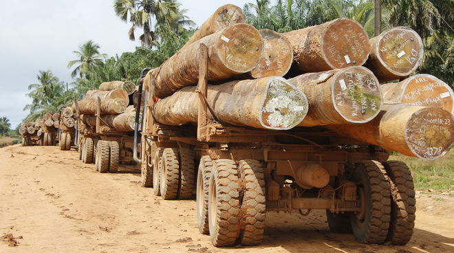 Truck loaded with logs in Liberia