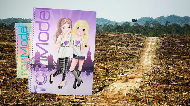 Photo montage with two Topmodel writing pads and a cleared rainforest area in the background