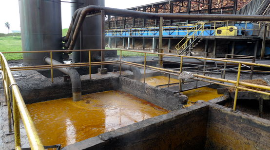 Palm oil mill on Borneo