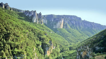 A rugged, forested valley in southern France