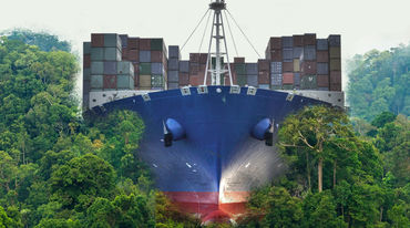A container ship plowing through the rainforest