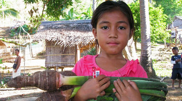 A Pala'wan girl carrying Taro, the local vegetable, standing in front of village huts