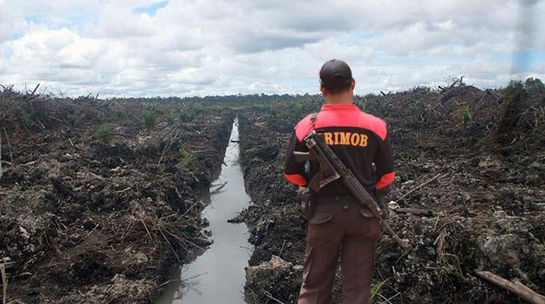 A man wearing a Brimob logo and an assault rifle on his back in front of bulldozed rainforest