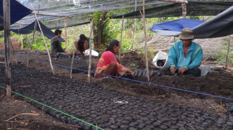 Volunteers fill bags with soil that will be used for planting tree seedlings