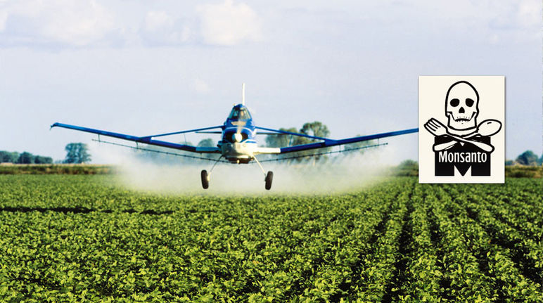 Airplane spraying pesticides over a soy plantation