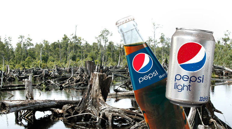 A can and a bottle of Pepsi, with a rainforest clearing in the background