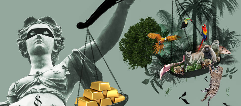 Lady Justice has gold on one side of her balance and rainforest on the other. The gold weighs heavier.