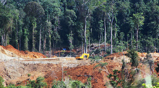 Petition Sulawesi Mining Threatens Nature Reserve