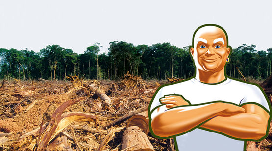 Mr. Clean standing with his arms crossed in front of a cleared forest