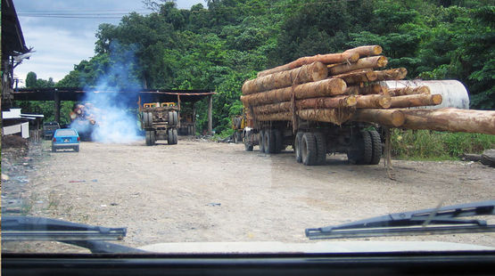 A Truck loaded with tropical timber in the Malaysian state Sabah