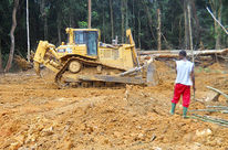 bulldozer in a clear-cut area in the rainforest in cameroon